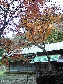 091104sandankyoo.JPG