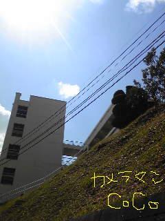 20090402camera.jpg