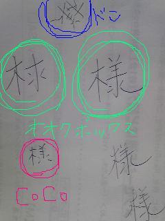 20090416sama.jpg