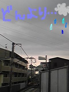 20090713donnyori.jpg