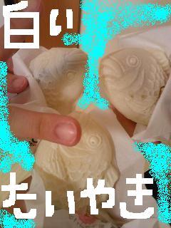 20090716taiyaki.jpg