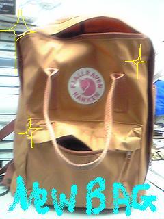 20090804bag.JPG