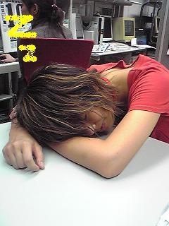 20090819theme.JPG
