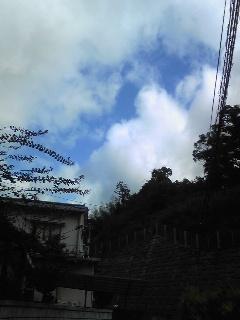 20091008hare.jpg