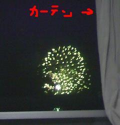 2010-7-26-1.JPG