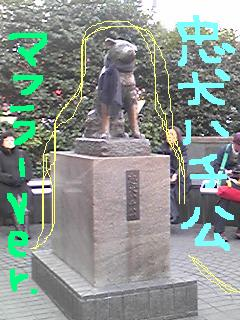 20100201hachikou.jpg