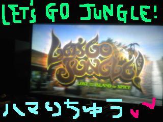 20100204let'sgojungle!.jpg