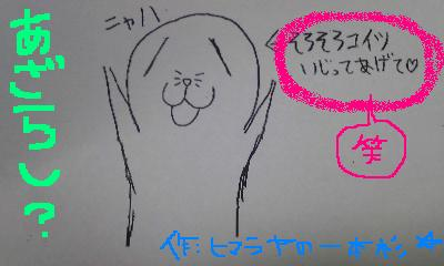 20100304azarashi.jpg