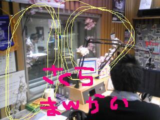 20100401sakura.jpg