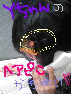 20100427pin.jpg