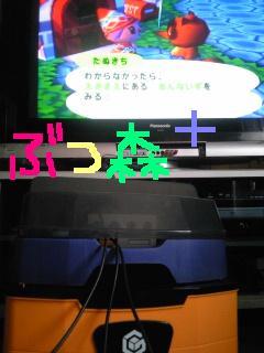 20100503butsumori.jpg
