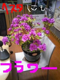 201005051st.jpg