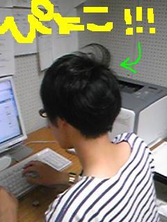 20100720pyoko.jpg