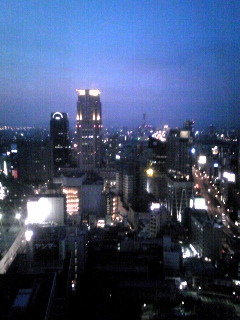 20100815yakei.jpg