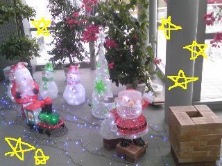 20101130kirakira.jpg