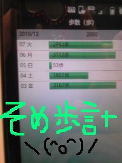 20101207somepo.jpg