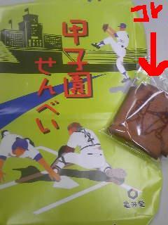 20110809koushien.jpg