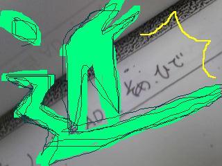 20110830somehide.jpg