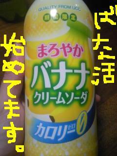 20110913banakatsu.jpg