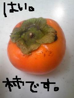 20111011kaki.jpg