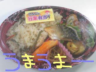 20111018umaumaobentou.jpg
