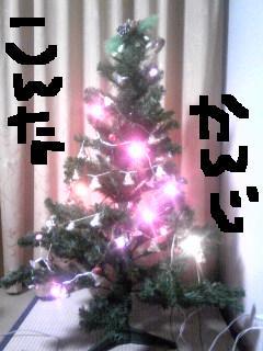 20111227konnnatree.jpg