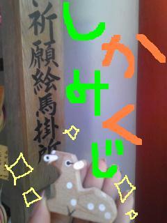 Image1149.jpg