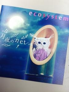 ecosystemmm.JPG