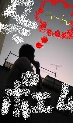 091201_1714~01.JPG