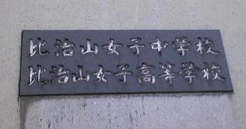 20090428-hijiyama01.jpg