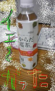 20090526-08.JPG