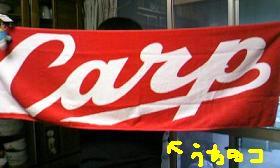2010-4-1.JPG
