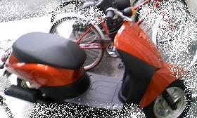 2010-4-14-1.JPG