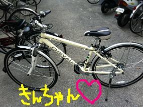 kinchan.JPG