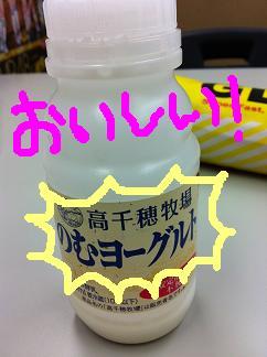 yo-guruto.JPG