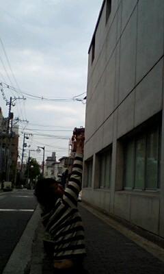 070501tobasu.jpg