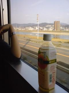 080401_otagawa.jpg