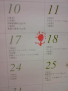 080512_rose.jpg
