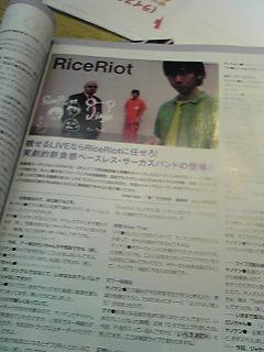 081001shinseidou.JPG