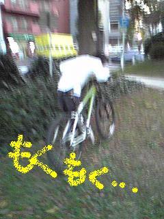 081015kinokosagashi2.JPG