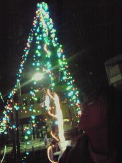 081211_tree-akinakano.jpg