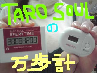081215_taro.jpg
