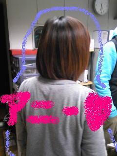 20090126annie.jpg