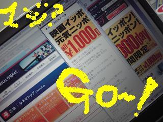 2009022018120000.jpg