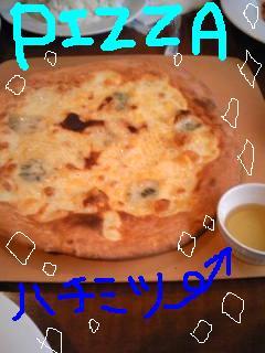 20090330pizza.jpg