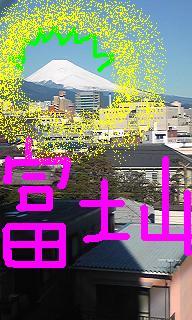20090203-04.JPG