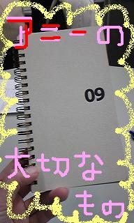 20090331-01.JPG
