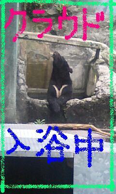 asazoo-03.JPG