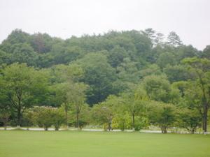 Park20.JPG