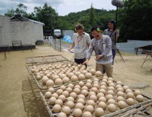 Ushio Factrory12.JPG